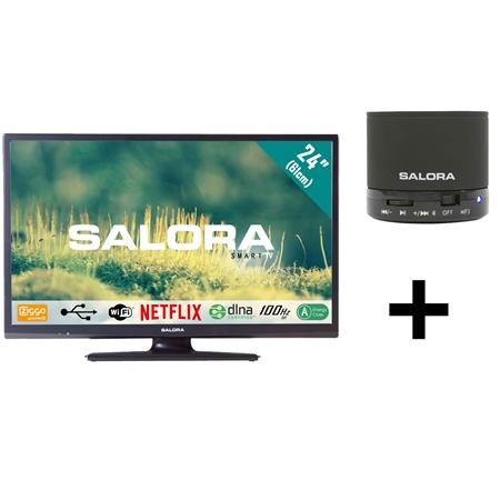 Salora 24EHS2000 + BTS300 speaker