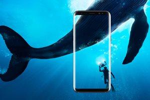 Samsung Telefonie