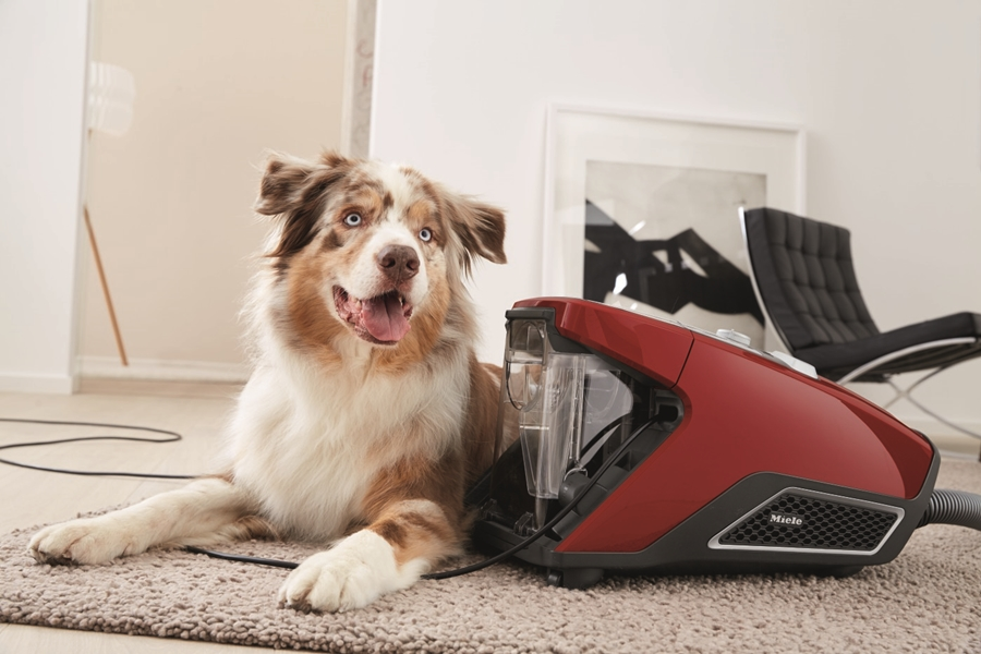 Miele Blizzard CX1 Cat&Dog PowerLine Stofzuiger zonder zak 5