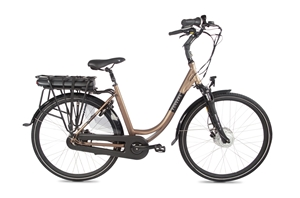 Fongers E-bike Action 14,5 Ah