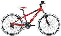 Ferrini Ride 24''