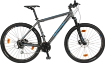 Ideal Zigzag 29er