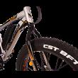 Monteria e-Fatbike 374 W