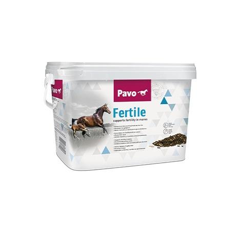Pavo Fertile - 1