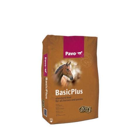 Pavo BasicPlus - 1