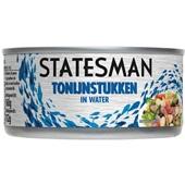Statesman Tonijnstukken In Water