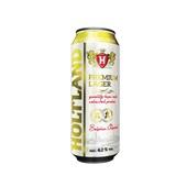 Holtland Bier Blik 50 Cl