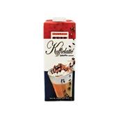 Holland Foodz Ijskoffie Latte Verkeerd
