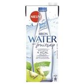 DubbelFrisss Bronwater met fruitsap kiwi-munt