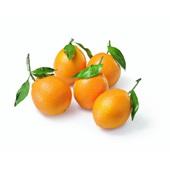 handsinaasappels met blad