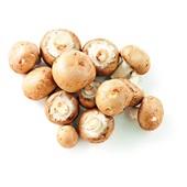 biologische kastanje champignons