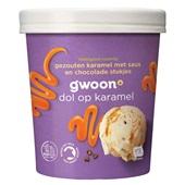 Gwoon biologisch roomijs  gezouten karamel met saus en chocoladestukjes
