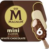 Ola Magnum  mini's mix 6 stuks