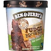 Ben&Jerry non dairy choco fudge brownie voorkant