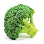 biologische broccoli