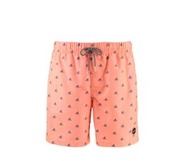 SHIWI SWIM SHORTS JAWS KINDEREN