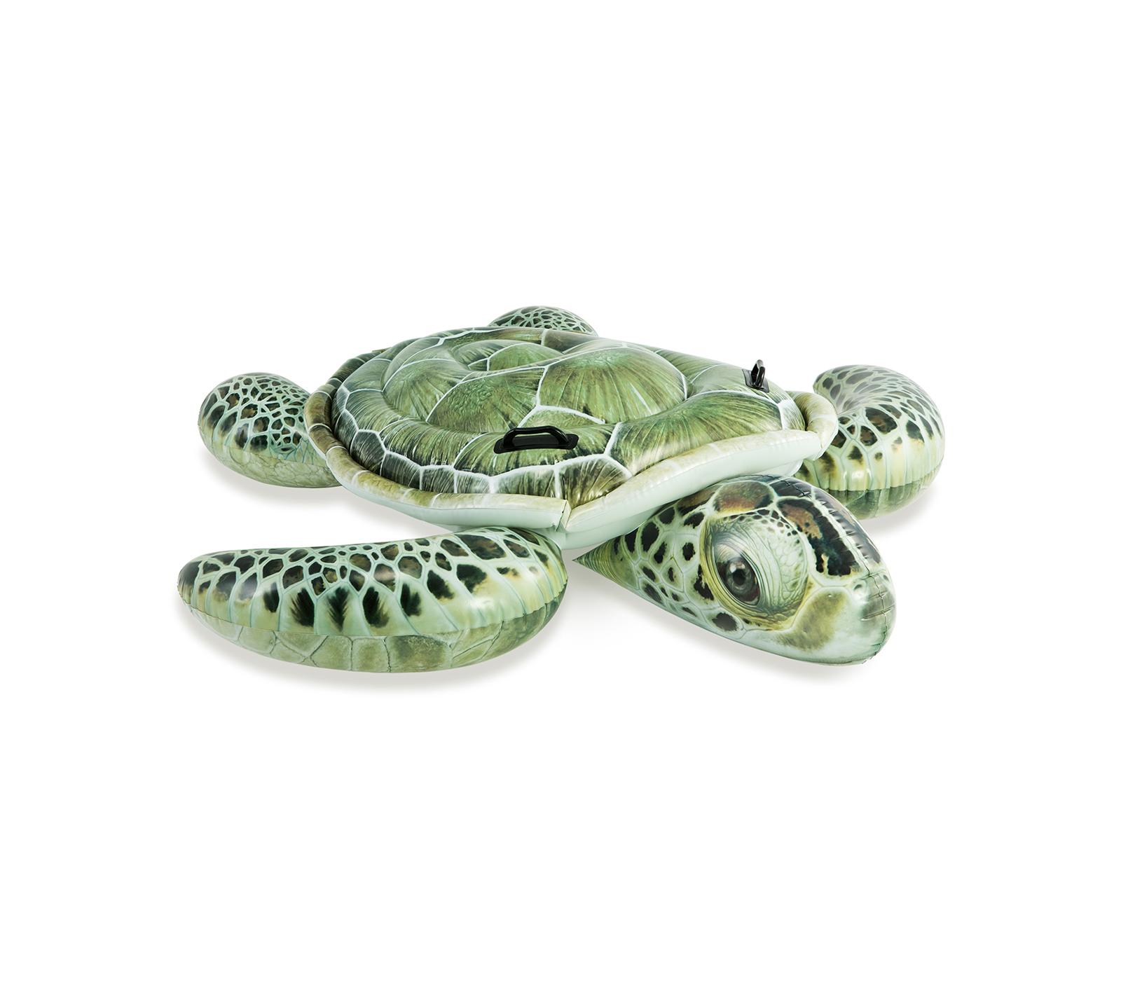Intex Schildpad Kinderen