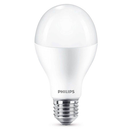 Philips LED Lamp E27 18,5W Mat