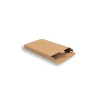 Cardboard Mailing Carton 250 mm x 160 mm Brown