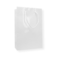 Glossybag 250 mm x 160 mm White
