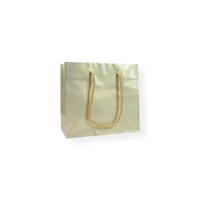GlossyBag Pearl White 8.66 inch x 7.48 inch Gold