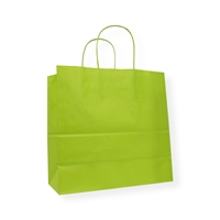 Awesome Bags 9.84 inch x 9.45 inch Green