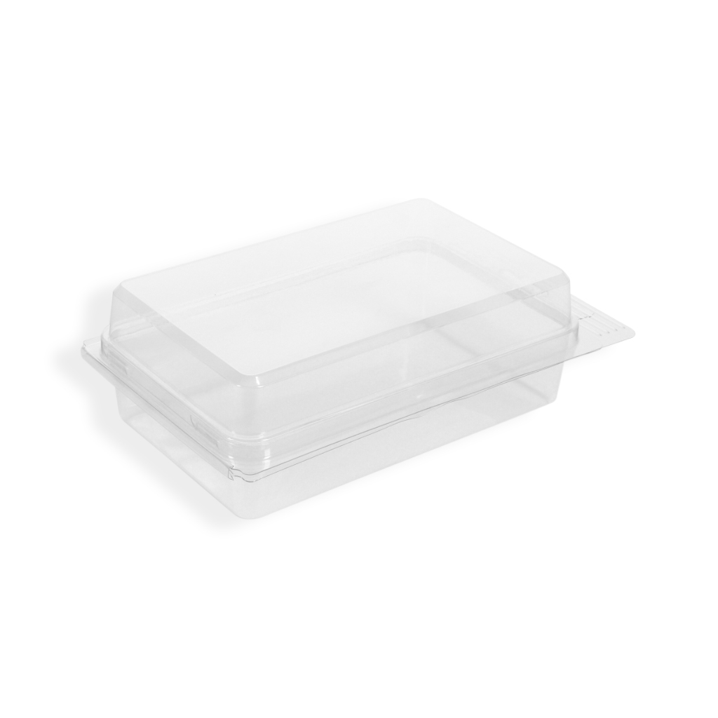 Euroblister 120 mm x 195 mm Transparent